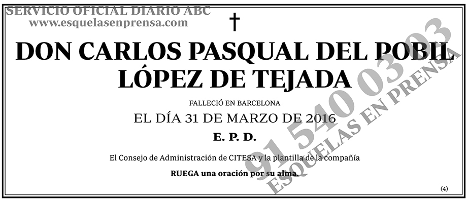 Carlos Pasqual del Pobil López de Tejada